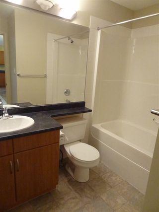 Photo 17: 339 78B MCKENNEY Avenue: St. Albert Condo for sale : MLS®# E4167971