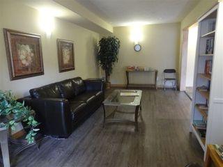 Photo 24: 339 78B MCKENNEY Avenue: St. Albert Condo for sale : MLS®# E4167971