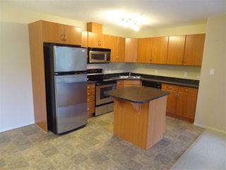 Photo 7: 339 78B MCKENNEY Avenue: St. Albert Condo for sale : MLS®# E4167971