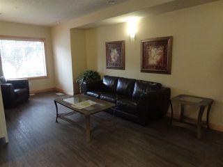 Photo 25: 339 78B MCKENNEY Avenue: St. Albert Condo for sale : MLS®# E4167971