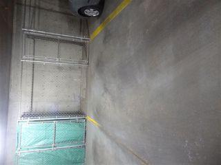 Photo 21: 339 78B MCKENNEY Avenue: St. Albert Condo for sale : MLS®# E4167971