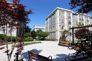 """Photo 14: 321 13728 108 Avenue in Surrey: Whalley Condo for sale in """"QUATTRO 3"""" (North Surrey)  : MLS®# R2519037"""