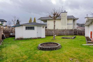 Photo 32: 8518 121 Street in Surrey: Queen Mary Park Surrey House for sale : MLS®# R2519098