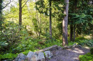 Photo 36: 560 NEWCROFT PLACE in West Vancouver: Cedardale House for sale : MLS®# R2506754