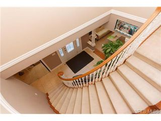 Photo 16: 4041 Braefoot Rd in VICTORIA: SE Mt Doug Single Family Detached for sale (Saanich East)  : MLS®# 642638
