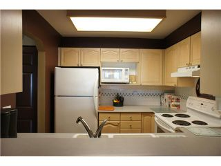 "Photo 9: 408 6707 SOUTHPOINT Drive in Burnaby: South Slope Condo for sale in ""MISSION WOODS"" (Burnaby South)  : MLS®# V1015325"