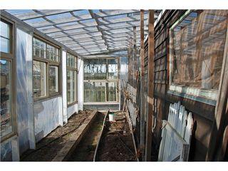 Photo 19: 1556 WESTMINSTER AV in Port Coquitlam: Glenwood PQ House for sale : MLS®# V1047874