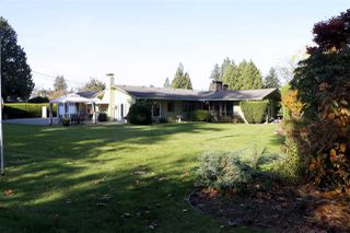 Photo 19: 21948 CLIFF Place in Maple Ridge: West Central House for sale : MLS®# R2418229