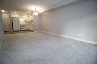 Photo 23: 111 11511 27 Avenue in Edmonton: Zone 16 Condo for sale : MLS®# E4192292