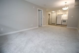Photo 22: 111 11511 27 Avenue in Edmonton: Zone 16 Condo for sale : MLS®# E4192292