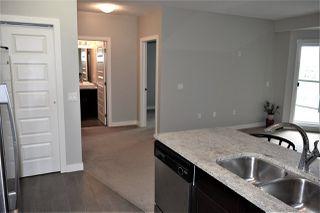 Photo 7: 311 1230 WINDERMERE Way in Edmonton: Zone 56 Condo for sale : MLS®# E4198085