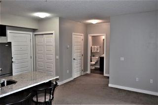 Photo 9: 311 1230 WINDERMERE Way in Edmonton: Zone 56 Condo for sale : MLS®# E4198085