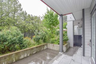 Photo 14: 9 7247 140 Street in Surrey: East Newton Townhouse for sale : MLS®# R2484787