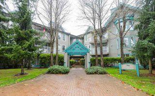 Photo 1: 213 15150 108 ST in Surrey: Guildford Condo for sale (North Surrey)  : MLS®# F1445407