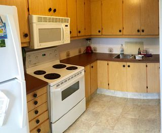Photo 8: 14111 117 Street NW: Edmonton House for sale : MLS®# E4030054