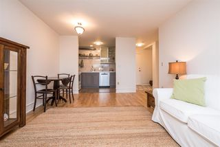 Photo 5: 308 2215 DUNDAS STREET in Vancouver: Hastings Condo for sale (Vancouver East)  : MLS®# R2139798