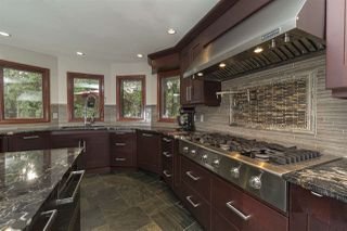 Photo 14: 264 Windermere Drive in Edmonton: Zone 56 House for sale : MLS®# E4202752