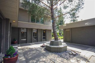 Photo 47: 264 Windermere Drive in Edmonton: Zone 56 House for sale : MLS®# E4202752