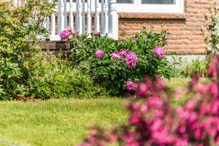Photo 26: 286 Gourok Avenue in Dartmouth: 17-Woodlawn, Portland Estates, Nantucket Residential for sale (Halifax-Dartmouth)  : MLS®# 202011555