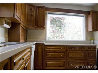 Photo 3: 982 Darwin Ave in VICTORIA: SE Quadra Single Family Detached for sale (Saanich East)  : MLS®# 571046