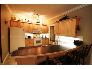 Photo 3: 305 60 24 Avenue SW in CALGARY: Erlton Condo for sale (Calgary)  : MLS®# C3528905