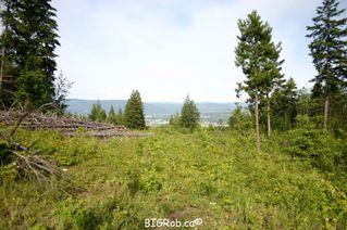 Photo 29: 190 SW Christison Road in Salmon Arm: Gleneden Vacant Land for sale : MLS®# 10118444