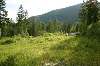 Photo 17: 190 SW Christison Road in Salmon Arm: Gleneden Vacant Land for sale : MLS®# 10118444