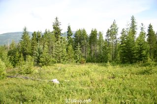 Photo 21: 190 SW Christison Road in Salmon Arm: Gleneden Vacant Land for sale : MLS®# 10118444