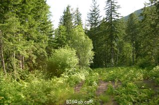 Photo 13: 190 SW Christison Road in Salmon Arm: Gleneden Vacant Land for sale : MLS®# 10118444