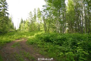 Photo 9: 190 SW Christison Road in Salmon Arm: Gleneden Vacant Land for sale : MLS®# 10118444