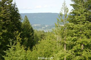 Photo 24: 190 SW Christison Road in Salmon Arm: Gleneden Vacant Land for sale : MLS®# 10118444