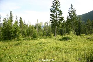 Photo 22: 190 SW Christison Road in Salmon Arm: Gleneden Vacant Land for sale : MLS®# 10118444