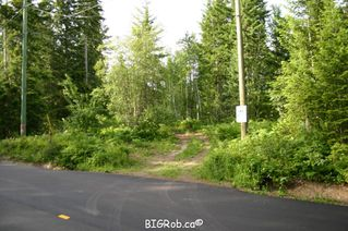 Photo 3: 190 SW Christison Road in Salmon Arm: Gleneden Vacant Land for sale : MLS®# 10118444