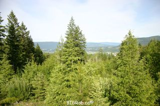 Photo 23: 190 SW Christison Road in Salmon Arm: Gleneden Vacant Land for sale : MLS®# 10118444