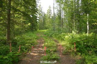 Photo 7: 190 SW Christison Road in Salmon Arm: Gleneden Vacant Land for sale : MLS®# 10118444