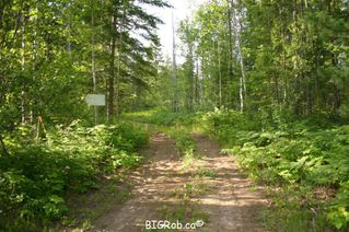 Photo 6: 190 SW Christison Road in Salmon Arm: Gleneden Vacant Land for sale : MLS®# 10118444