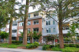 Photo 15: 204 2368 MARPOLE AVENUE in Port Coquitlam: Central Pt Coquitlam Condo for sale : MLS®# R2284323