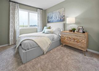 Photo 22: 5197 Edgemont Boulevard in Edmonton: Zone 57 House for sale : MLS®# E4168785