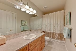Photo 19: 11572 15 Avenue in Edmonton: Zone 16 House for sale : MLS®# E4171663