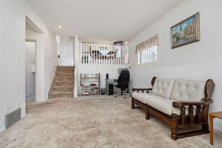 Photo 24: 32 CALICO Drive: Sherwood Park House for sale : MLS®# E4185747