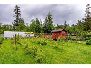 Photo 25: 30039 DEWDNEY TRUNK Road in Mission: Stave Falls House for sale : MLS®# R2458346
