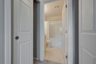 Photo 23: 405 11109 84 Avenue in Edmonton: Zone 15 Condo for sale : MLS®# E4204269
