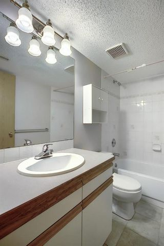 Photo 32: 260 APPLEWOOD Drive SE in Calgary: Applewood Park Detached for sale : MLS®# A1016719