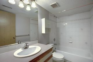 Photo 31: 260 APPLEWOOD Drive SE in Calgary: Applewood Park Detached for sale : MLS®# A1016719