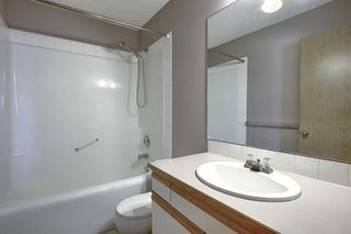 Photo 22: 260 APPLEWOOD Drive SE in Calgary: Applewood Park Detached for sale : MLS®# A1016719