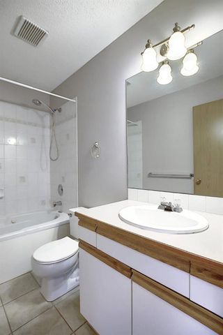 Photo 19: 260 APPLEWOOD Drive SE in Calgary: Applewood Park Detached for sale : MLS®# A1016719