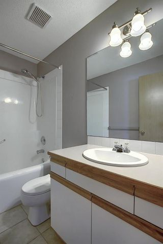 Photo 23: 260 APPLEWOOD Drive SE in Calgary: Applewood Park Detached for sale : MLS®# A1016719