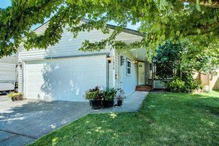 Photo 19: 11970 238B Street in Maple Ridge: Cottonwood MR House for sale : MLS®# R2480569