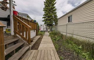 Photo 36: 836 53222 Rge Rd 272: Rural Parkland County Mobile for sale : MLS®# E4209948