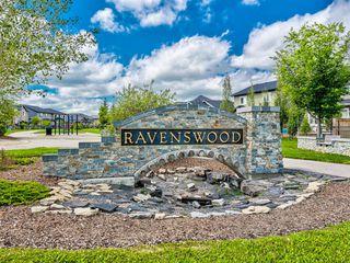 Photo 39: 1422 RAVENSCROFT Avenue SE: Airdrie Detached for sale : MLS®# A1027246